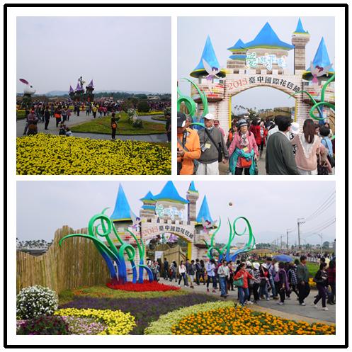 2013新社花海節