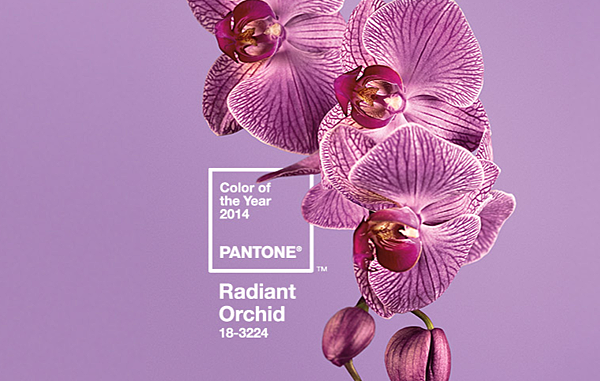 Radiant Orchid - Pantone Color of the Year 2014  - Color trends, color palettes , Pantone 18-3224 TCX.