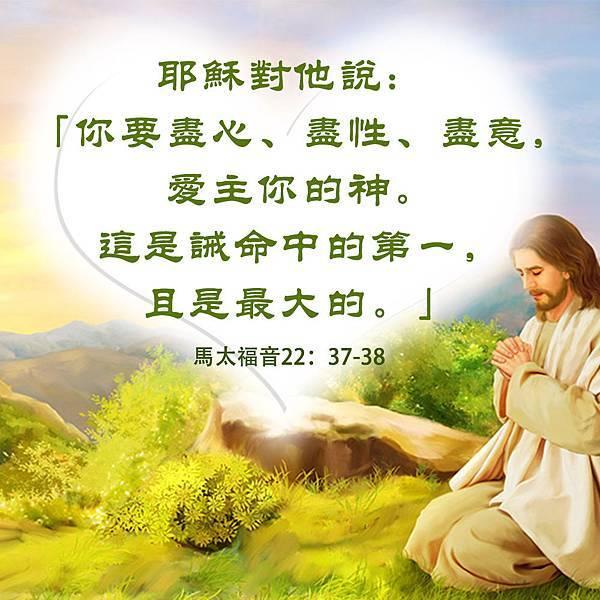 主耶稣在山上祷告.jpg