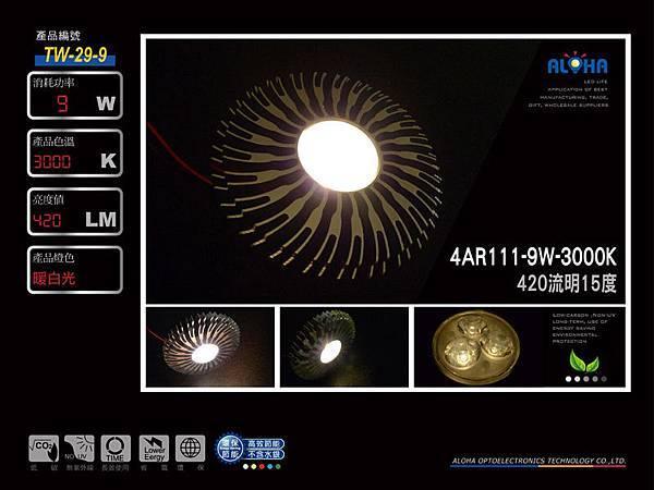 TW-29-9 1000x750