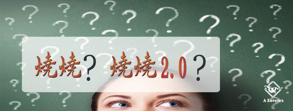 2017 燒燒VS燒燒2-2.JPG