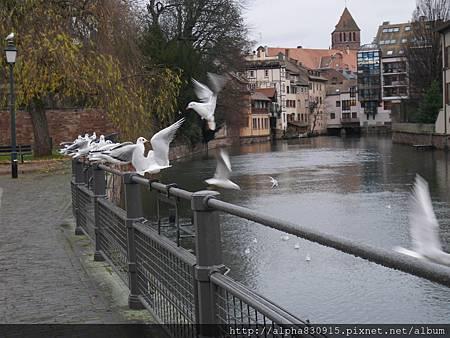 20151220-20151221 Strasbourg (165).JPG