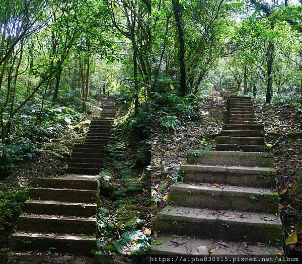 樓梯上坡.jpg