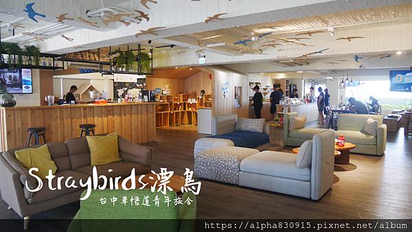 Straybirds漂鳥.png