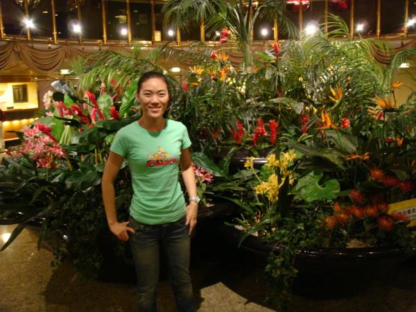 lobby中間廣場的小花園