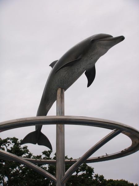可愛小海豚
