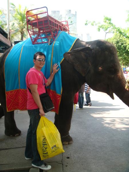 大象皮超硬
