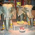 餐廳外的大象神