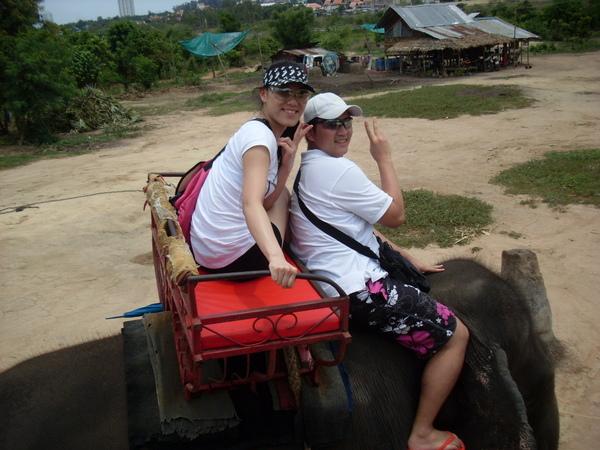 騎大象真奇妙