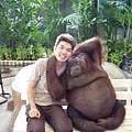 丫德與紅毛猩猩