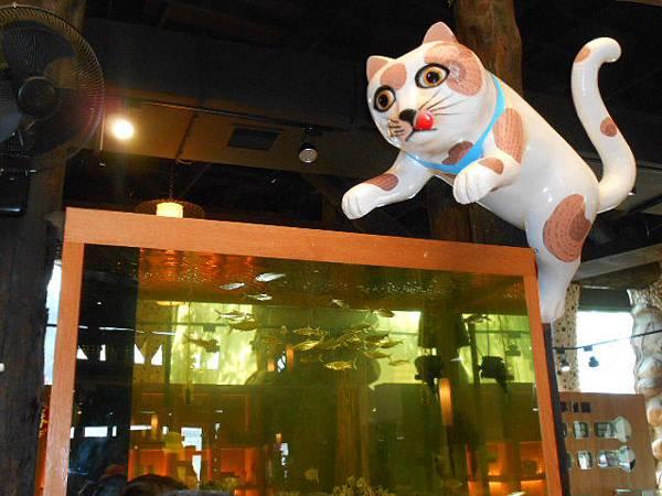 想吃魚的貓.JPG