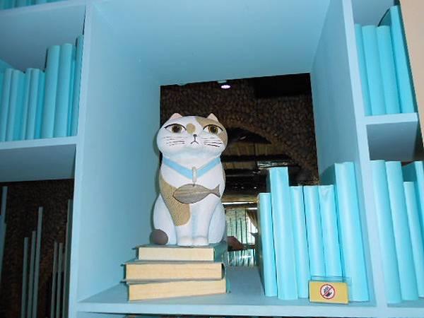 書櫃裡的貓.JPG