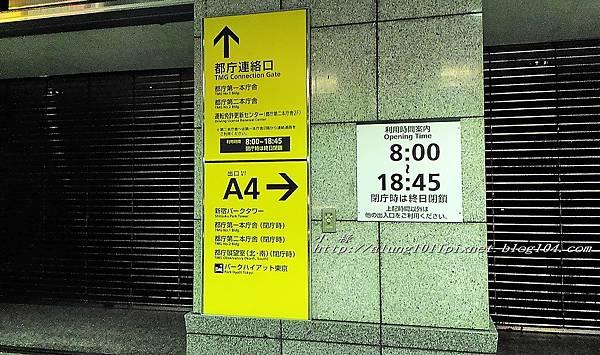 都庁夜景 (5).jpg
