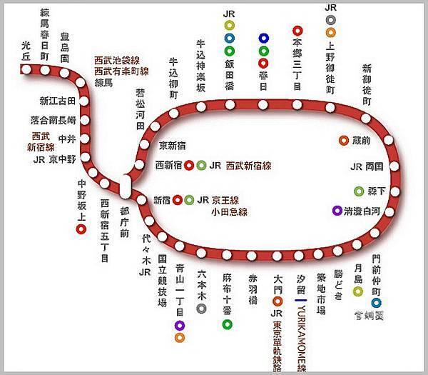 都庁夜景 (6).jpg