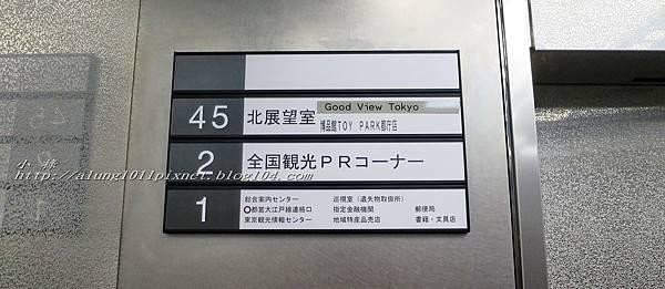 都庁夜景 (11).jpg