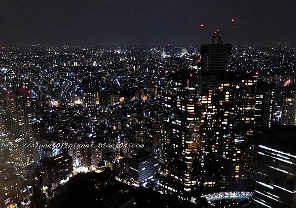 都庁夜景 (21).jpg