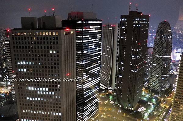 都庁夜景 (26).jpg