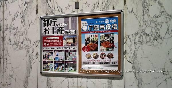 都庁夜景 (31).jpg