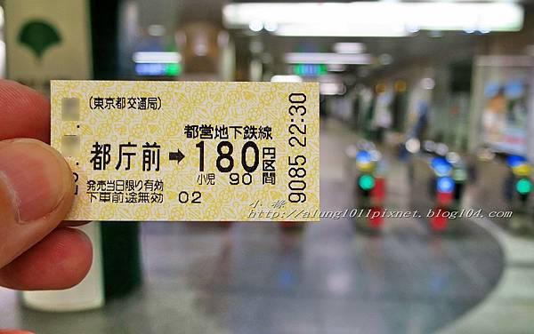 都庁夜景 (35).JPG