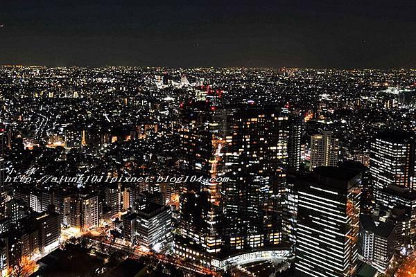 都庁夜景 (39).jpg