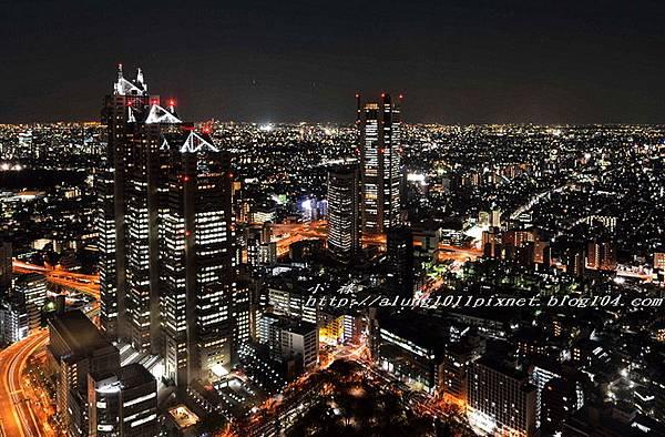 都庁夜景 (38).jpg