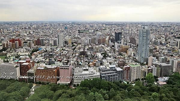 都庁午餐 (57).jpg