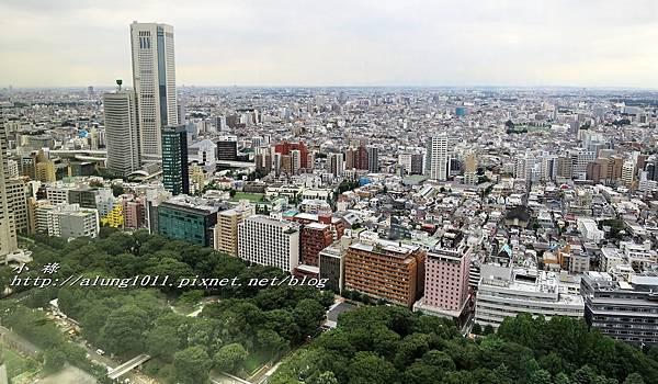 都庁午餐 (58).jpg