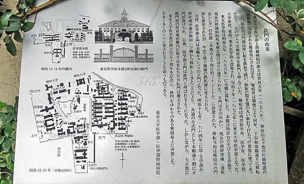 東大食堂 (3).JPG