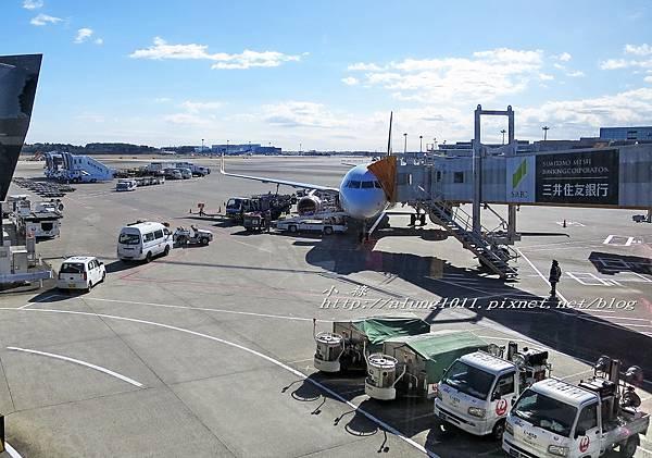 京成Skyliner (2).jpg
