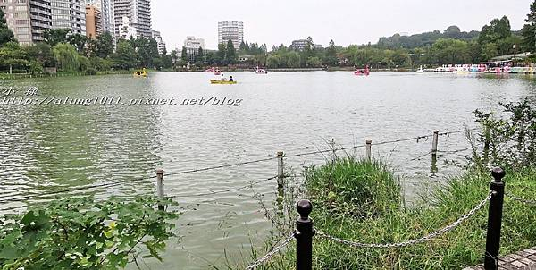 清水堂 (28).jpg