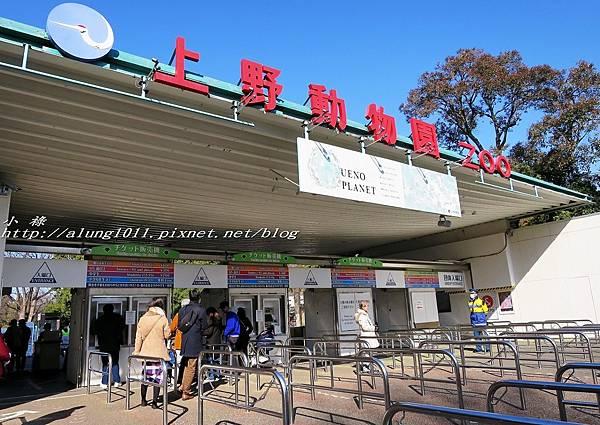 上野動物園 (1).JPG