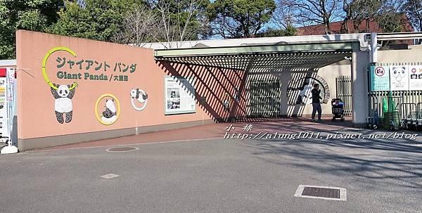 上野動物園 (7).jpg
