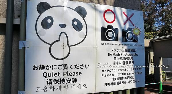 上野動物園 (8).jpg