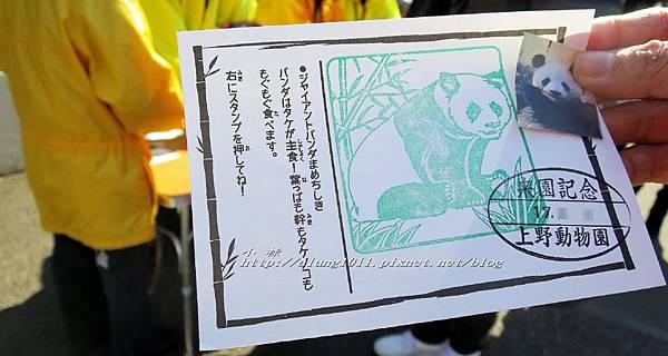 上野動物園 (15).jpg