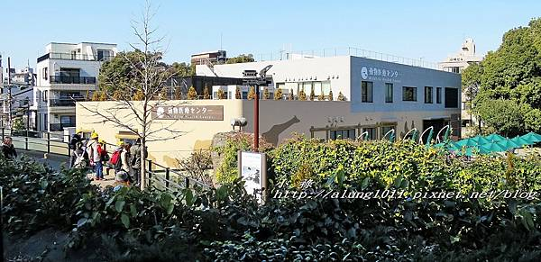 上野動物園 (21).jpg
