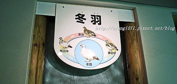 上野動物園 (28).JPG