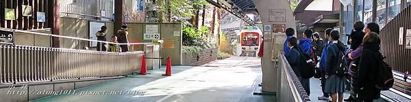 上野動物園 (37).jpg