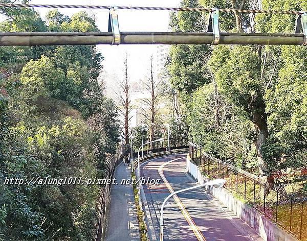 上野動物園 (45).JPG