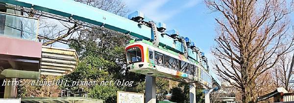 上野動物園 (47).JPG