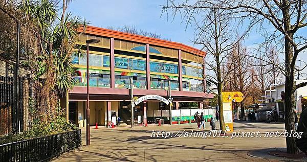 上野動物園 (50).JPG