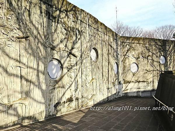 上野動物園 (55).JPG