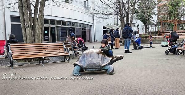 上野動物園 (61).jpg