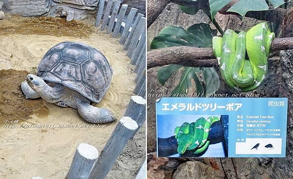 上野動物園 (60).jpg