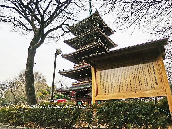 上野動物園 (69).JPG