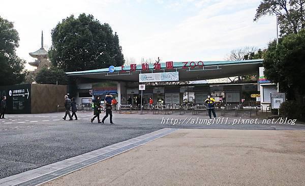 上野動物園 (74).JPG