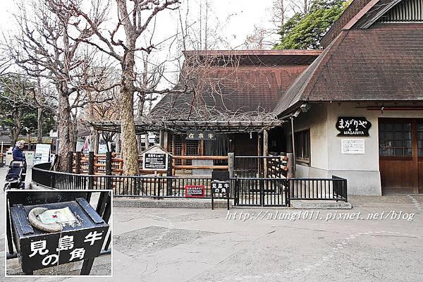 上野動物園 (80).JPG