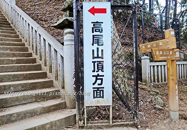 登高尾山 (44).JPG