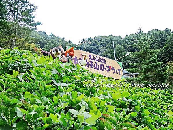 天上山公園 (1).JPG