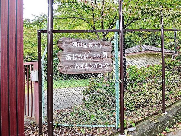 天上山公園 (3).JPG