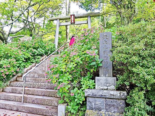 天上山公園 (7).JPG